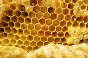 蜂王浆怎么吃,中老年人吃蜂王浆的正确吃法