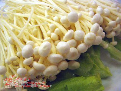 金针菇的营养成分及营养价值